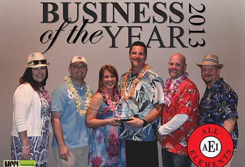 aei-business-of-the-year-2014