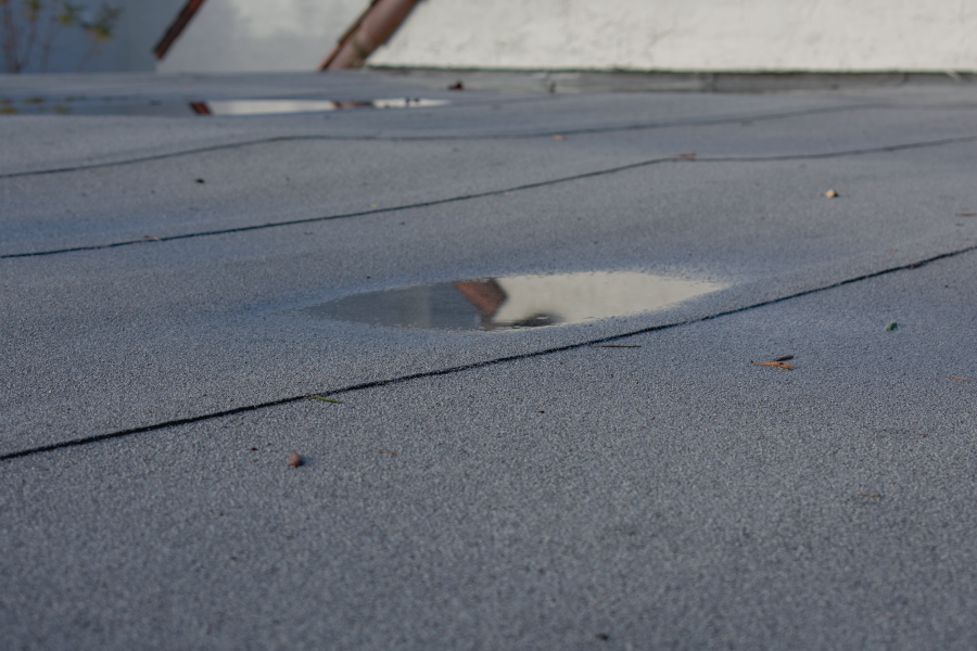 Help! My New Roof Leaks and the Contractor is Out of Business!