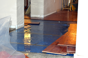 The Cost of Water Damage to Your Roof